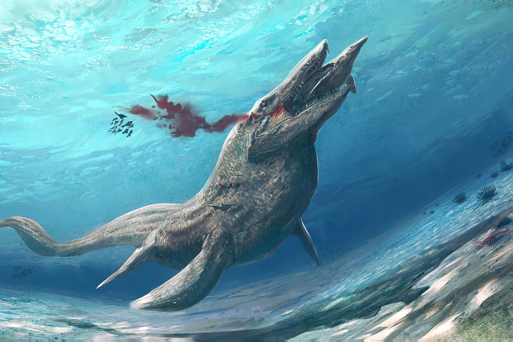 """""""Khủng long bạo chúa đại dương"""", nỗi kinh hoàng của cá mập thời tiền sử - 1"""