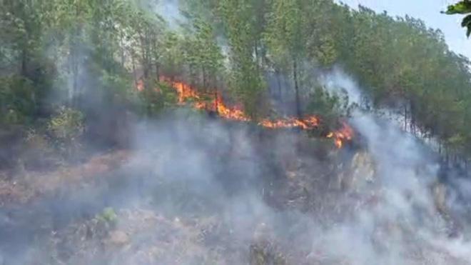 Nắng nóng quay trở lại, rừng ở Hà Tĩnh lại tiếp tục cháy lớn - 1