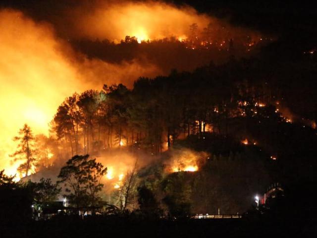 Rừng Hà Tĩnh lại cháy dữ dội, hàng trăm người lên núi Nậm dập lửa giữa đêm