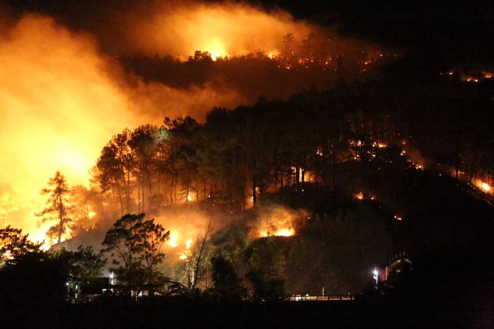 Rừng Hà Tĩnh lại cháy dữ dội, hàng trăm người lên núi Nầm dập lửa giữa đêm - 1