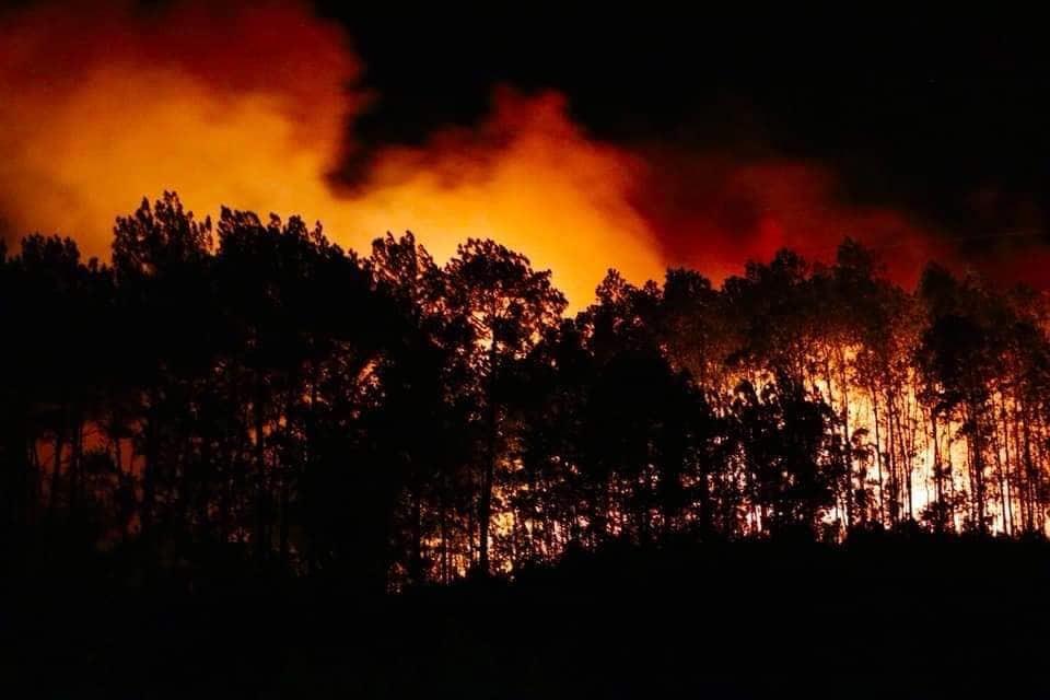 """Ảnh: Nửa đêm, dân Hà Tĩnh lả người chạy """"giặc lửa"""" tràn xuống từ núi Nầm - 1"""