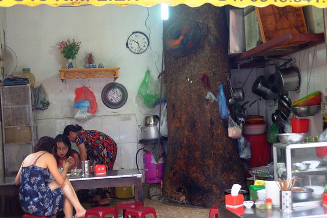 Nhiều gia đình đã biến những cây cổ thụ nằm trong khuôn viên nhà thành nơi nơi treo đồ đạc, trang trí. Thậm chí, không ít người kinh doanh còn coi chúng như chiếc ô khổng lồ làm bóng mát cho những ngày nắng chói chang và biến những chiếc cây này thành điểm độc đáo thu hút khách hàng.