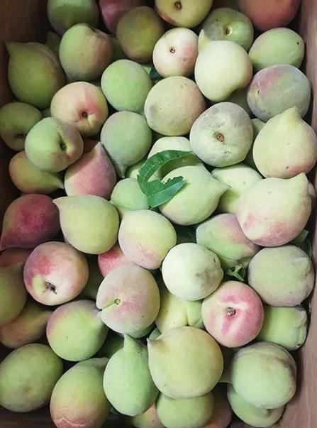 Hãy cẩn trọng khi mua hoa quả có những dấu hiệu này - 1