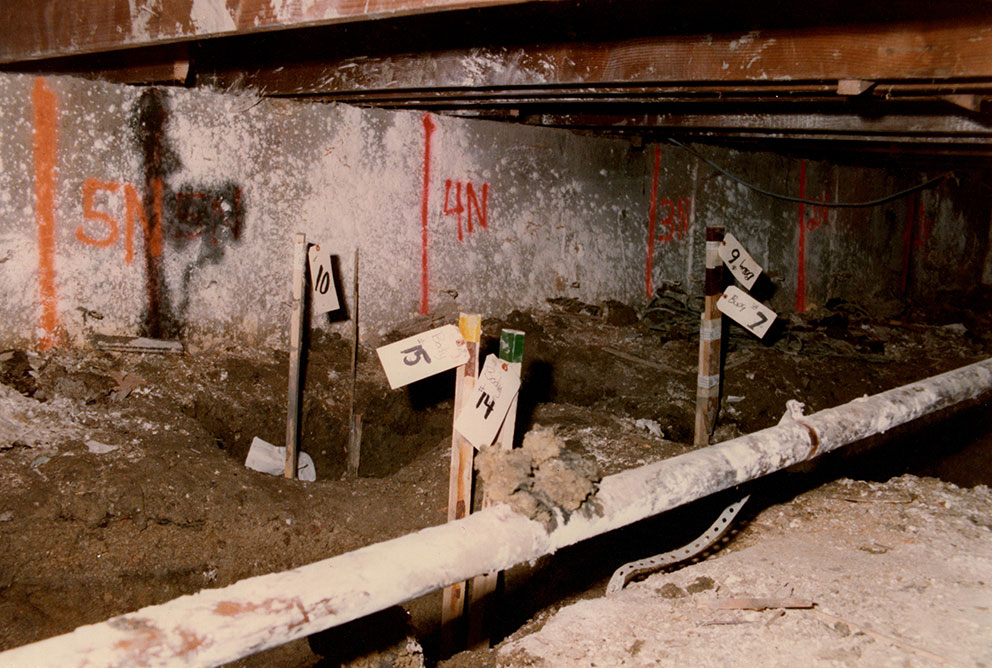 The basement is full of human bones and crimes of married
