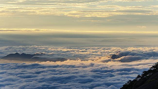 2.Những ngọn núi ở đây được bao phủ bởi những hàng thông dày và lớp sương mờ ảo suốt cả ngày. Khi lên tới đỉnh, du khách có thể cảm nhận được như mây đang bay lơ lửng trước mặt, thậm chí có thể chạm tay tới được.