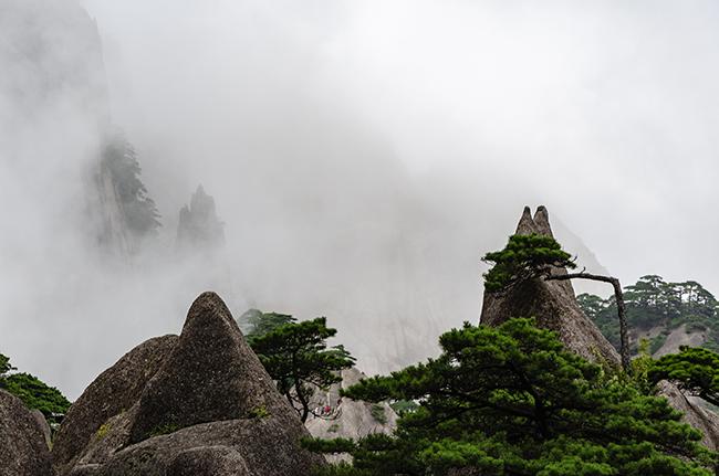 8.Tháng 7, tháng 8 có thể nói rằng đây là khoảng thời gian lý tưởng nhất để đến Hoàng Sơn. Nhiệt độ lúc này mát lạnh, rất thích hợp để leo núi ngắm cảnh.