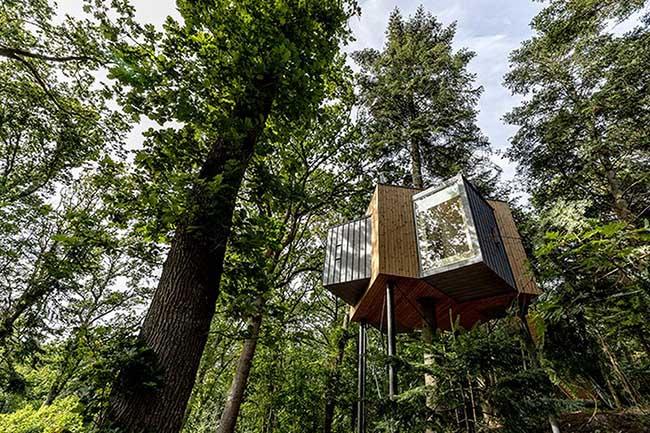 Thú vị với các ngôi nhà treo lơ lửng giữa rừng già ở Đan Mạch - 1