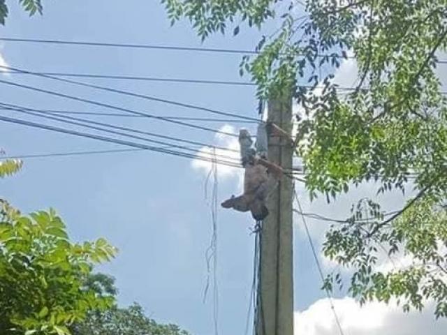 Tài xế xe tải bị điện giật treo lơ lửng trên cột điện