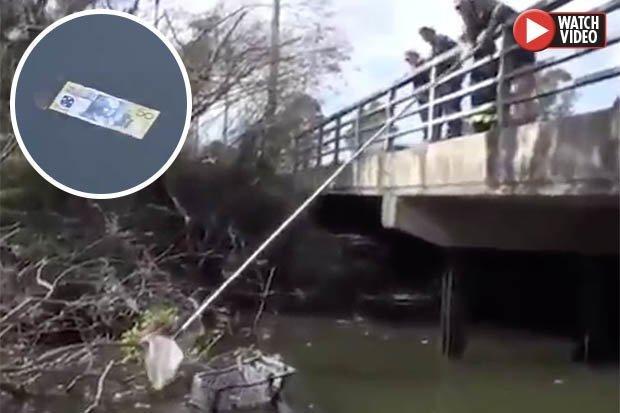 Video: Cậu bé trên đường đi học, phát hiện hàng loạt tờ tiền trôi trên sông ở Úc - 1