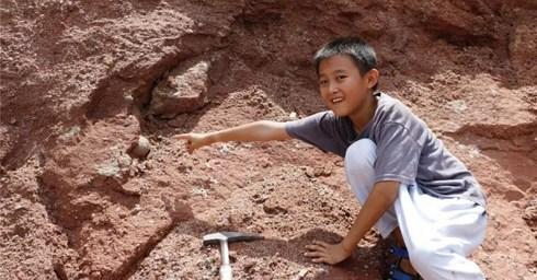 Đi dạo chơi, tình cờ nhặt được trứng khủng long 66 triệu năm tuổi - 1