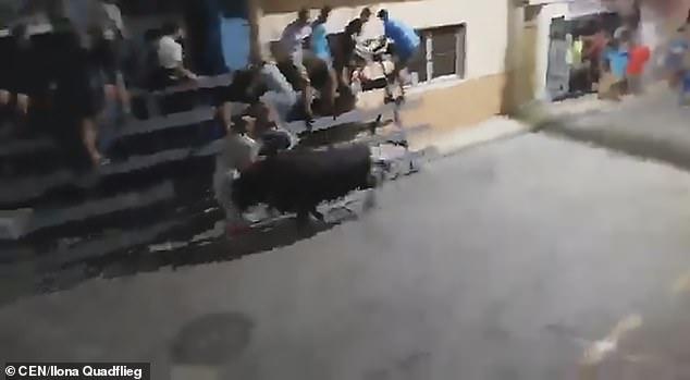 Video: Khoảnh khắc bò đực hất tung người đàn ông lên trời - 1