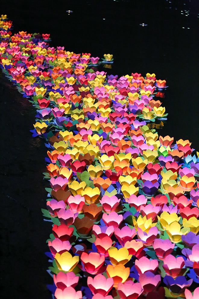 """""""Biển người"""" đi thả hoa đăng báo hiếu, sông Sài Gòn rực sáng dịp lễ Vu Lan - 12"""