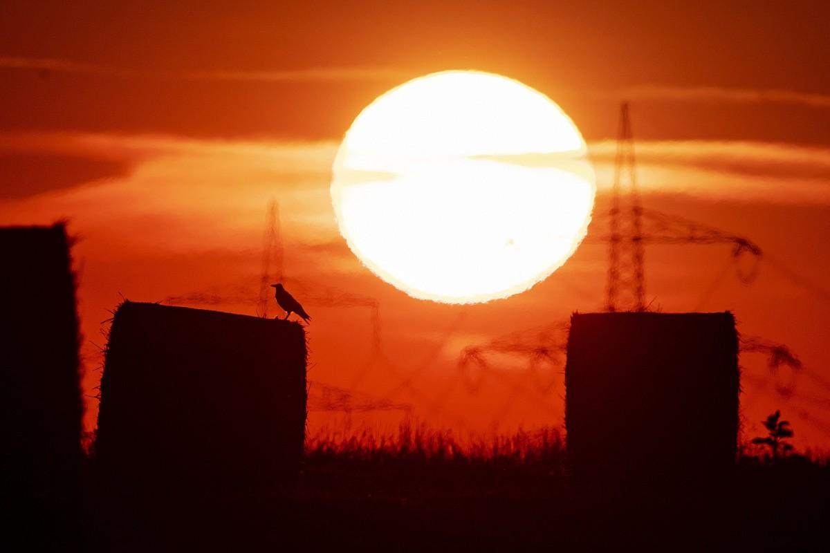 Chính thức: Thế giới trải qua tháng 7 nóng chưa từng thấy trong lịch sử - 1