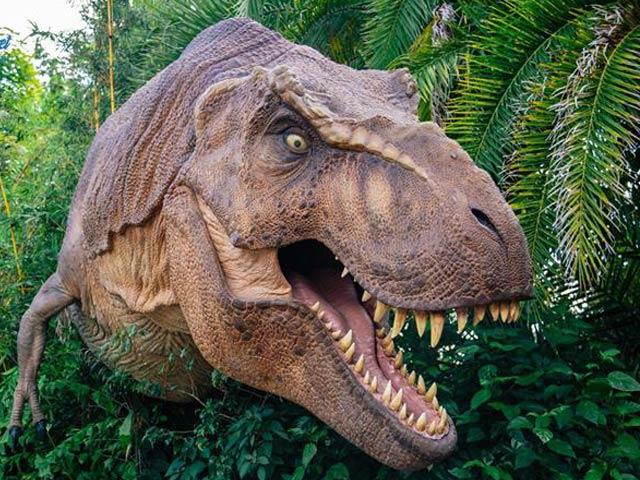 Media - Trải nghiệm cảm giác thăm quan công viên khủng long giữa đời thực