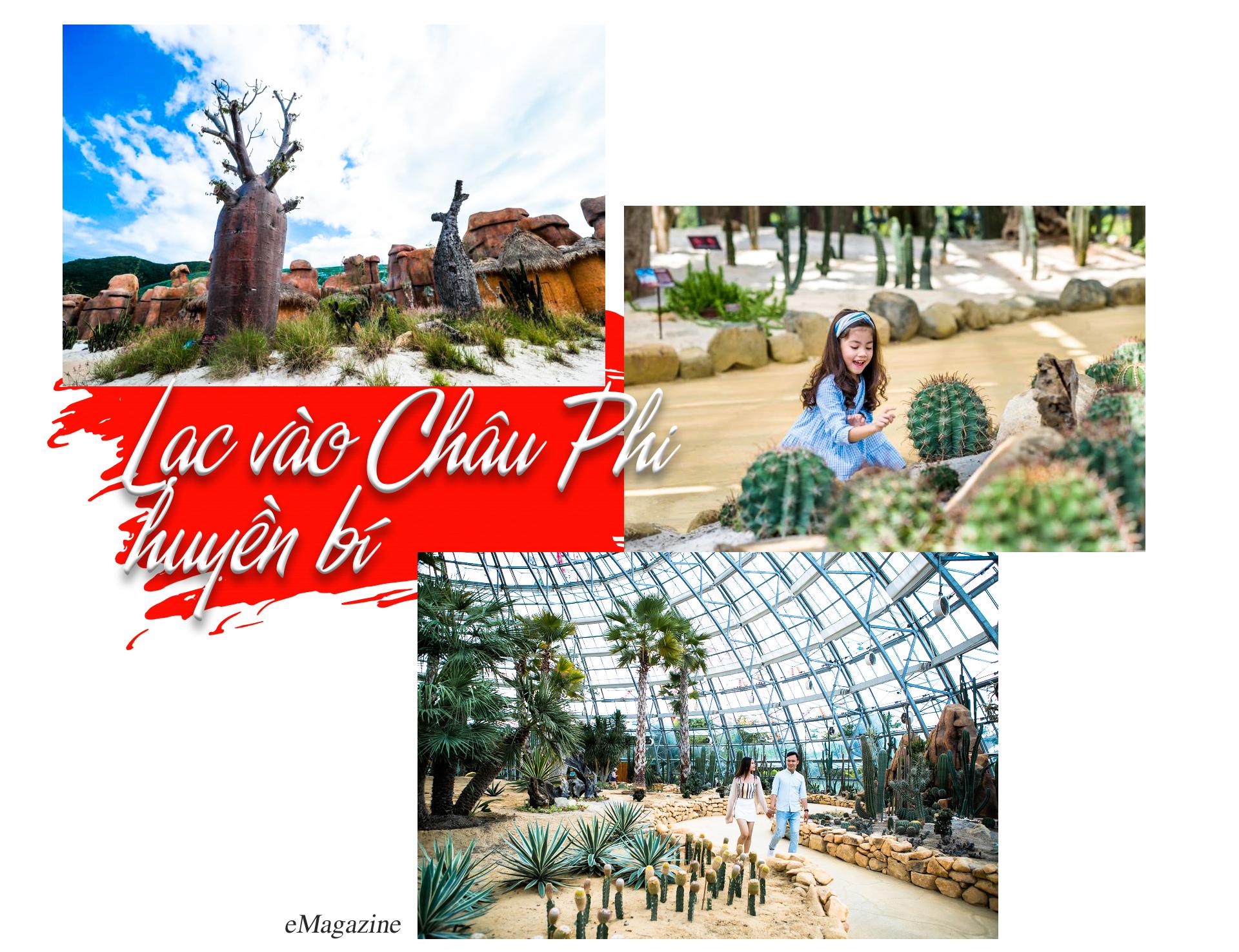 """Khám phá khu vườn """"kỳ hoa dị thảo"""" trên đảo kỷ lục tại Nha Trang - 7"""