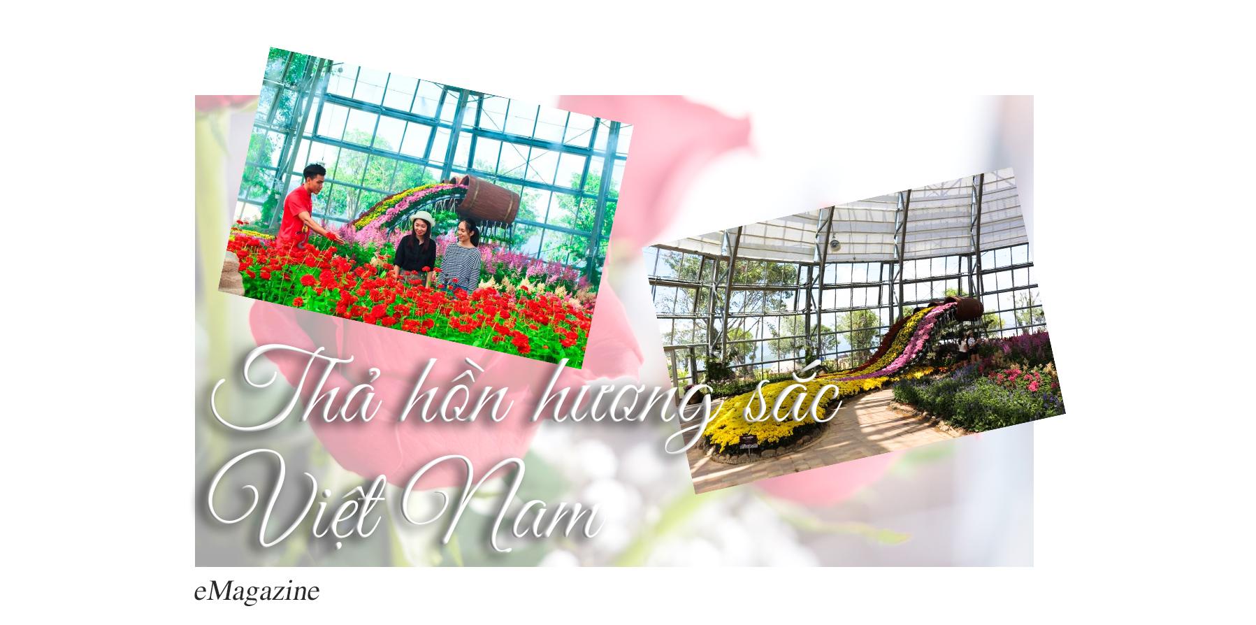 """Khám phá khu vườn """"kỳ hoa dị thảo"""" trên đảo kỷ lục tại Nha Trang - 9"""