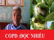 Tin tức sức khỏe - 3 đời nhà họ Hoàng ở Hưng Yên dùng lá này để đánh COPD, đờm, ho