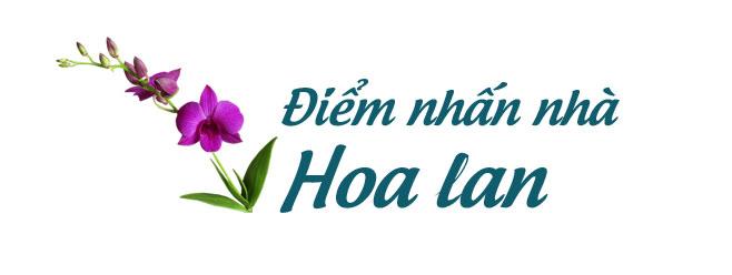 """Khám phá khu vườn """"kỳ hoa dị thảo"""" trên đảo kỷ lục tại Nha Trang - 10"""