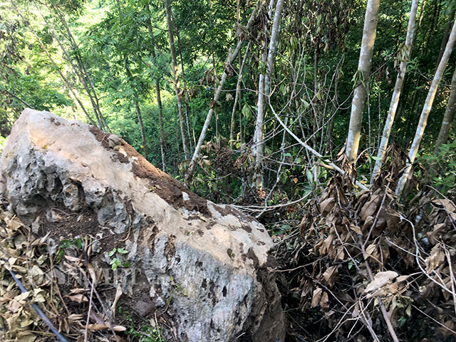 Dân khiếp vía vì đá lở đè bẹp máy xúc, phá nát cây ăn quả - 1