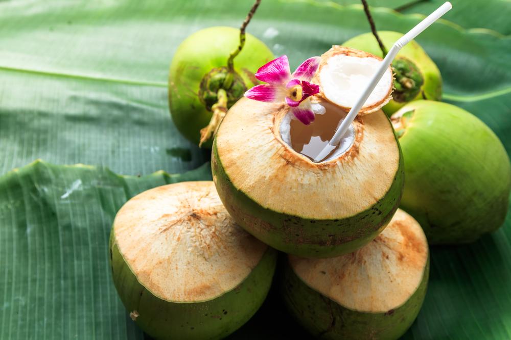 Nước dừa khiến bạn giảm cân hay béo lên trông thấy? - 1