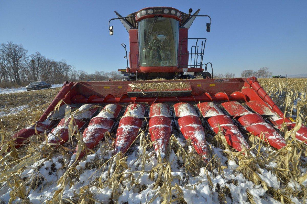 """Ngừng mua nông sản Mỹ, Trung Quốc nhận """"gáo nước lạnh"""" từ Nga - 1"""