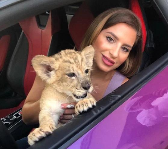 Gái trẻ khiến fan hú vía khi khoe ảnh chụp cùng sư tử trên chiếc Lamborghini đắt đỏ - 1