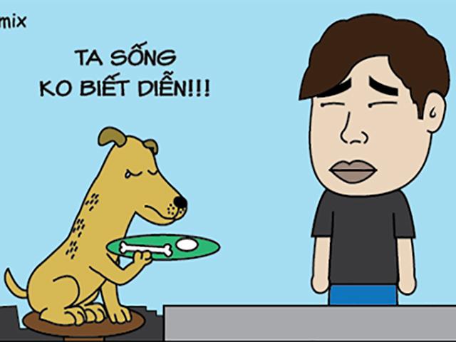Lý do Cậu Vàng mất vai diễn vào tay chú chó Nhật