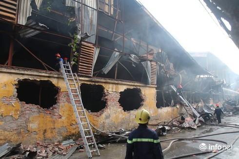 Sau hỏa hoạn, cổ phiếu Bóng đèn Phích nước Rạng Đông giảm kịch sàn - 1
