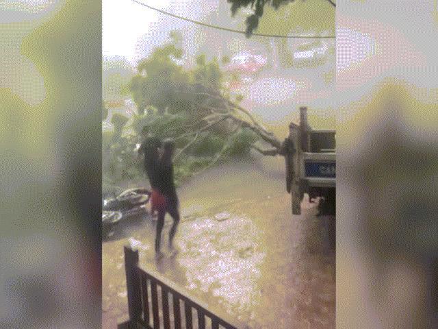 Ảnh-clip: Sấm sét, lốc xoáy kinh hoàng nhổ bật gốc cây trên phố Hà Nội