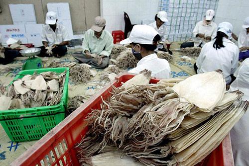 Hàng trăm tấn thủy sản tắc ở cửa khẩu do Trung Quốc tăng kiểm soát - 1