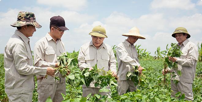 Tinh chất mầm đậu nành nào tốt? Hội sản phụ khoa khuyên dùng - 1