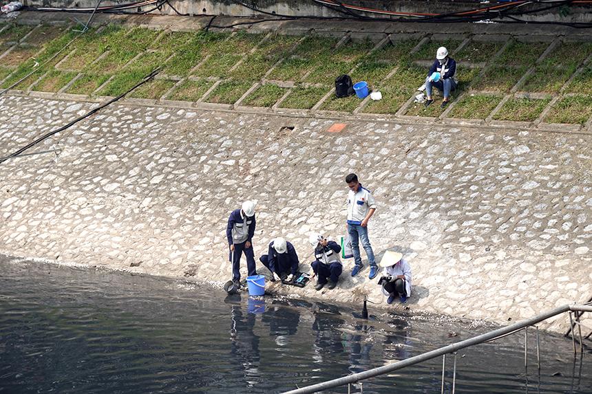 """Clip: Thả hàng trăm con cá chép xuống sông Tô Lịch khi """"bảo bối"""" của Nhật hết hạn thử nghiệm - 1"""