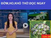 Tin tức sức khỏe - HTV7 đưa tin Việt Nam kiểm soát thành công đờm, ho, khó thở, COPD bằng thảo dược lạ