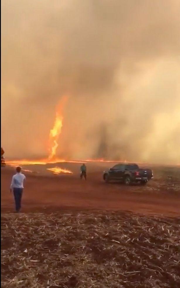 """Kinh hãi khi lốc xoáy """"quỷ lửa"""" cao 79m nóng hơn 1.000 độ C quét qua trang trại - 1"""