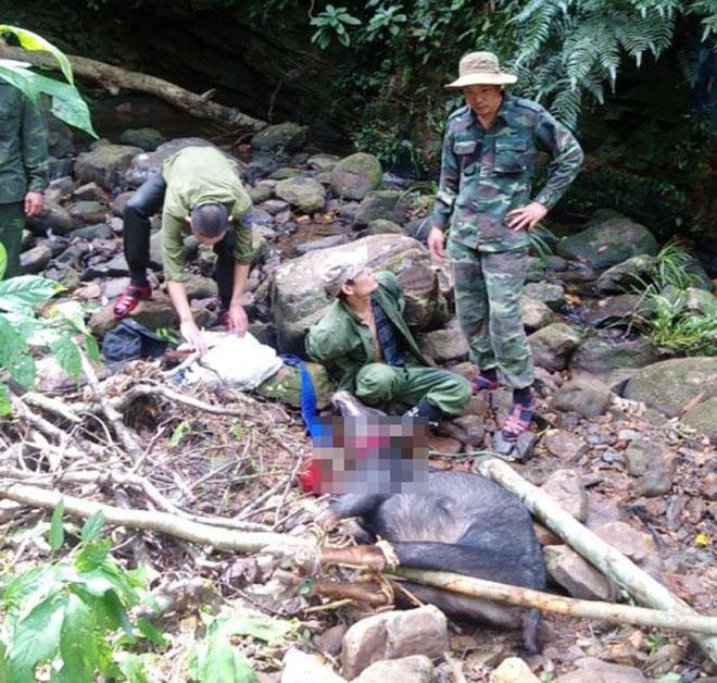 Truy tìm nhóm người giết thịt sơn dương quý hiếm trong vườn quốc gia - 1