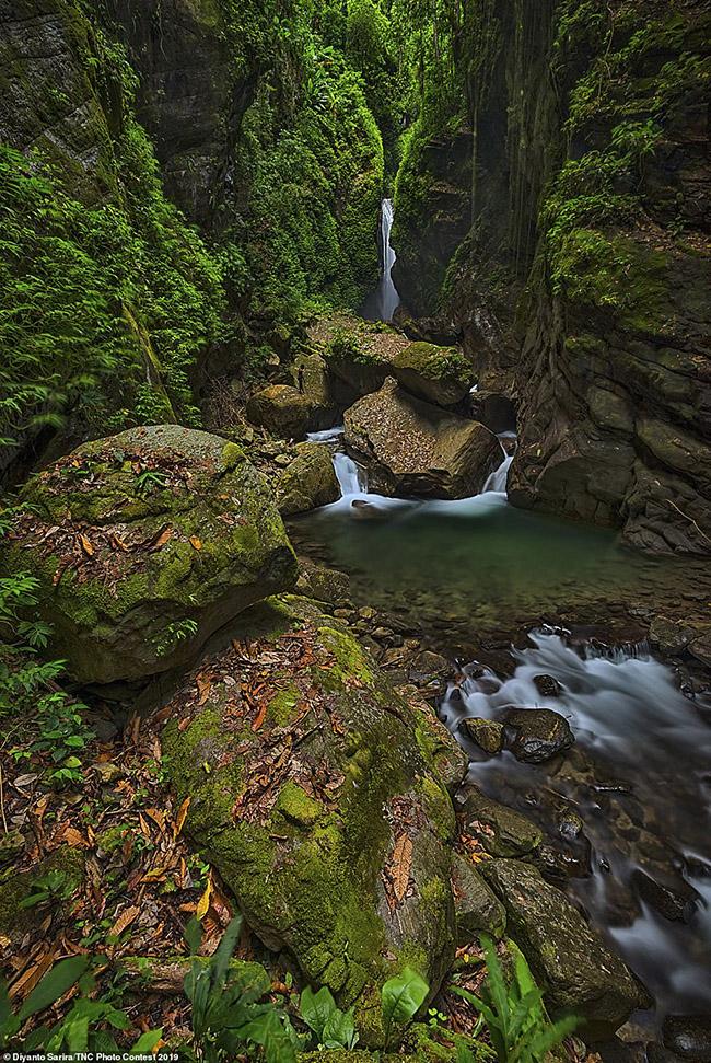 12. Diyanto Sarira ở Indonesia nhận giải thưởng được nhiều người yêu thích về hình ảnh một thác nước nhỏ và dòng suối ở Wasior, West Papua.