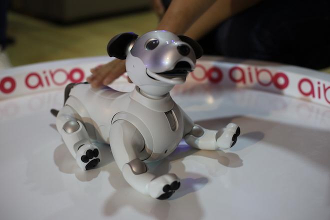 Ảnh, video chú cún Aibo tích hợp trí tuệ nhân tạo của Sony - 1