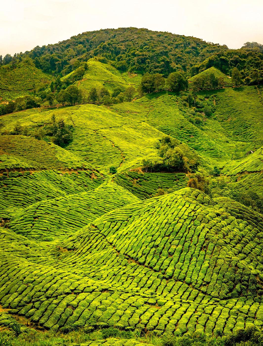 Việt Nam nằm trong top những quốc gia đẹp nhất thế giới - 13