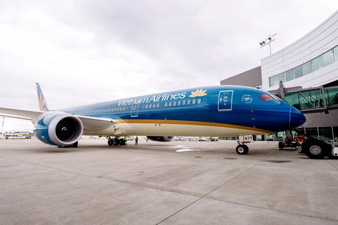Sân bay Nội Bài đóng đường băng 17 phút vì sự cố hy hữu - 1