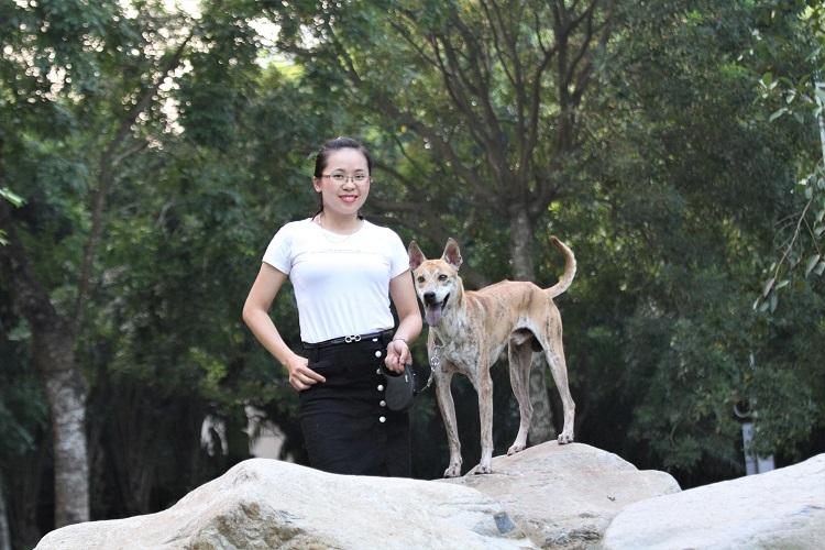 """""""Khuyển vương"""" 300 triệu và bí mật thương vụ chuyển nhượng chó Phú Quốc đắt nhất VN - 1"""