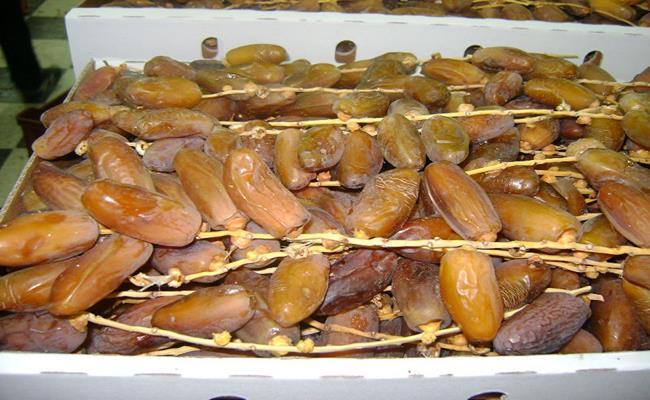 Chà là Dubai được chế biến thành hai loại: một là quả tươi đã qua sơ chế, hai là loại sấy khô có kẹp thêm một vài loại hạt.