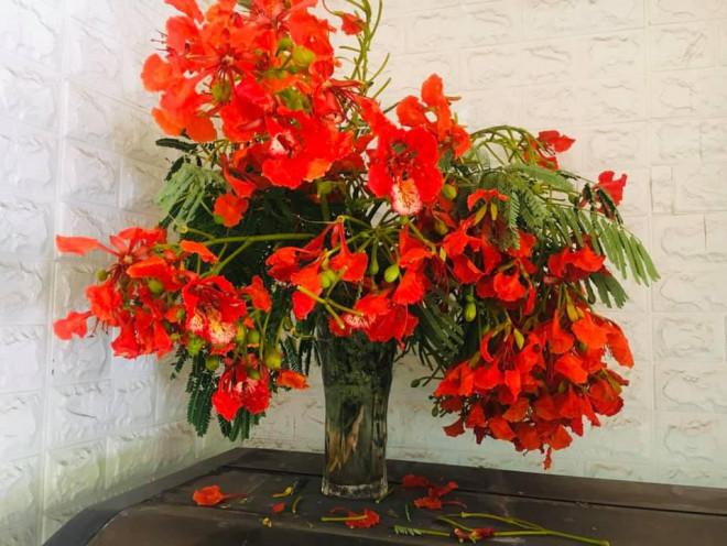 Không chỉ làm gỏi, loài hoa nở đỏ rực vào mùa hè còn có thể làm ra loại trà dưỡng nhan cực thơm ngon và bổ dưỡng này - 1