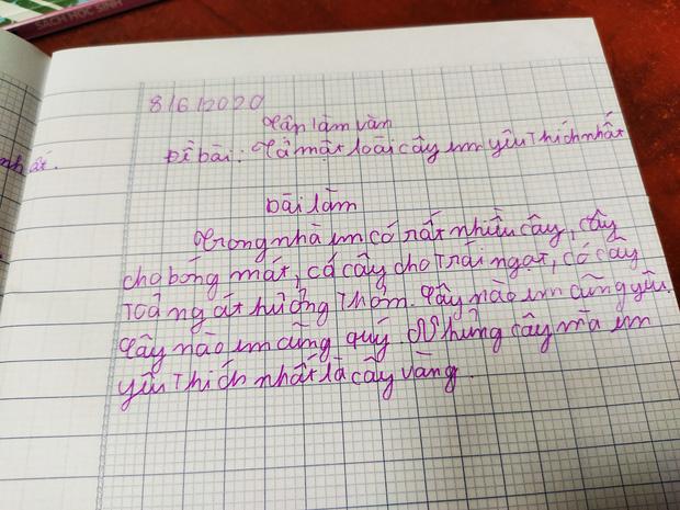 """Chết cười với bài văn tả cây của học sinh tiểu học, cô giáo cũng không ngờ """"bẻ lái"""" gắt đến thế - 1"""