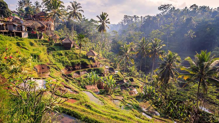 Du khách choáng ngợp trước những hòn đảo đẹp mê ly, nhiều nơi ngay gần Việt Nam - 1
