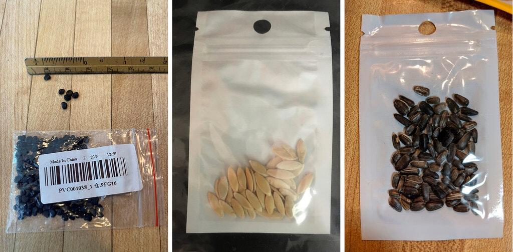 """Mỹ: Tìm ra """"chân tướng"""" những gói hạt giống bí ẩn gửi từ Trung Quốc? - 1"""