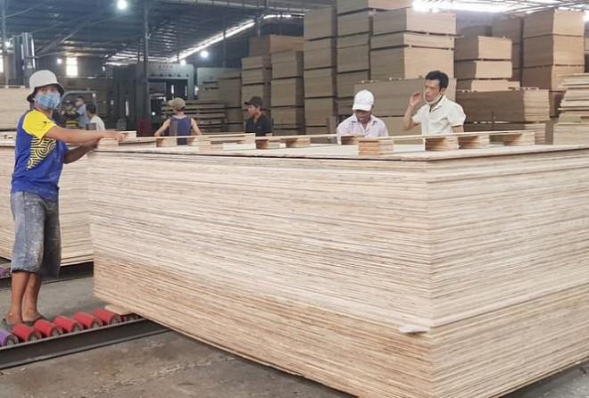 """Ngăn chặn hành vi đưa gỗ Trung Quốc sang Việt Nam """"rửa"""" xuất xứ, bán sang Mỹ - 1"""