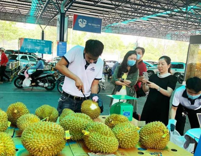 Sầu riêng Malaysia giá tiền triệu vẫn cháy hàng giữa lúc sầu riêng Việt rẻ rề - 1
