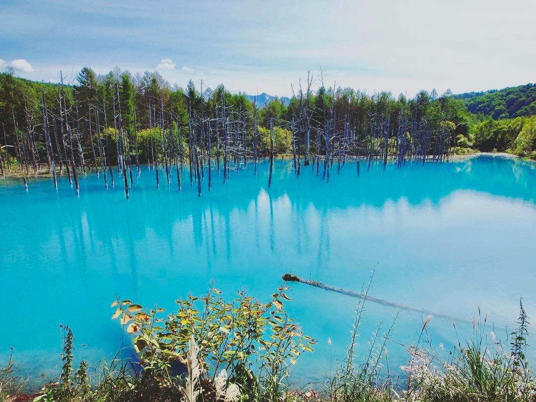 Những ngôi làng đẹp nhất Nhật Bản khiến du khách tưởng lạc vào truyện cổ tích - 2