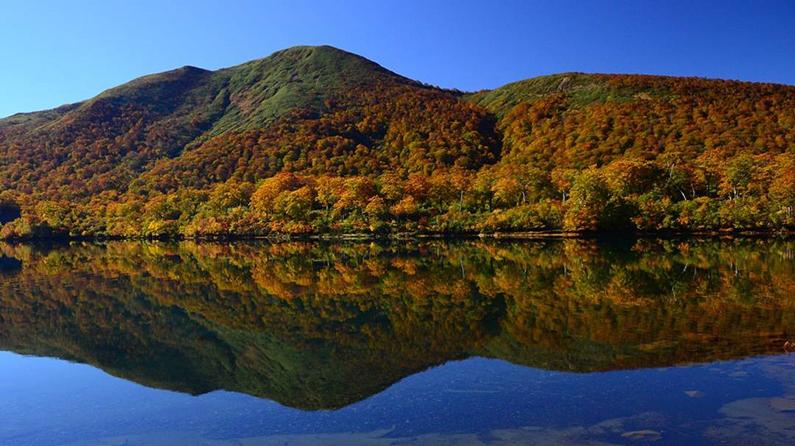 Những ngôi làng đẹp nhất Nhật Bản khiến du khách tưởng lạc vào truyện cổ tích - 6