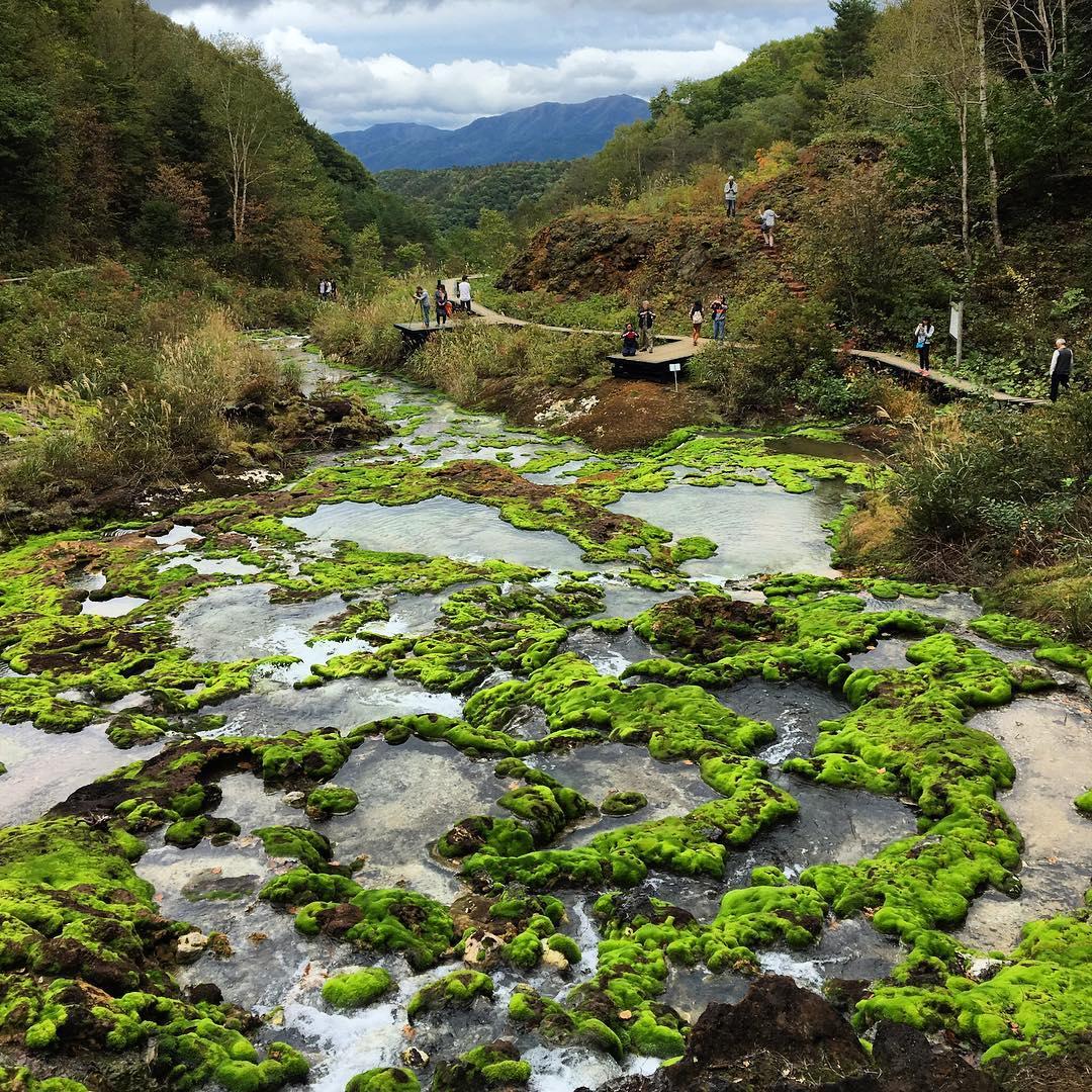 Những ngôi làng đẹp nhất Nhật Bản khiến du khách tưởng lạc vào truyện cổ tích - 13